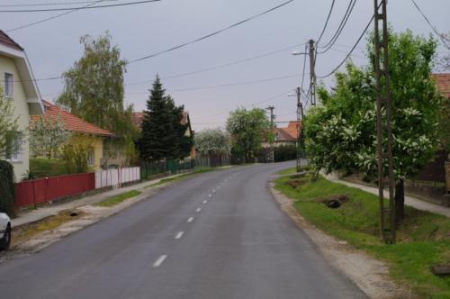 IMGP2978